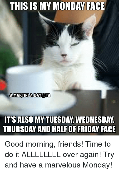 this my monday face amartinia day fb thursday and halfoffriday 3466636 ✅ 25 best memes about my monday face my monday face memes,Good Monday Morning Meme