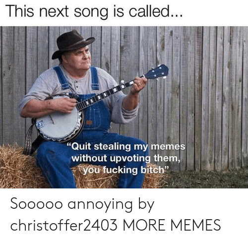 """Bitch, Dank, and Fucking: This next song is called...  """"Quit stealing my memes  without upvoting them,  you fucking bitch"""" Sooooo annoying by christoffer2403 MORE MEMES"""