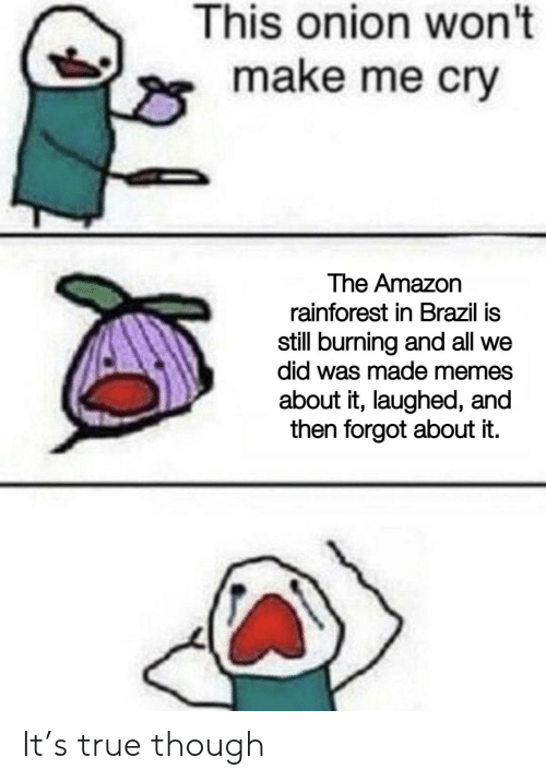 Amazon, Memes, and Reddit: This onion won't  make me cry  The Amazon  rainforest in Brazil is  still burning and all we  did was made memes  about it, laughed, and  then forgot about it. It's true though