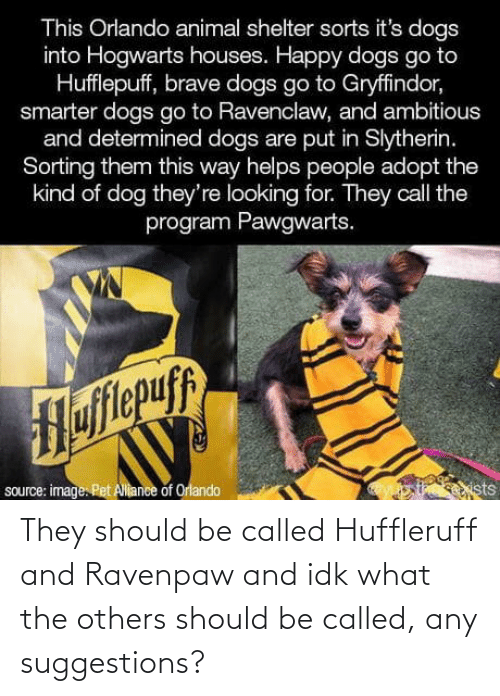 Dogs, Gryffindor, and Slytherin: This Orlando animal shelter sorts it's dogs  into Hogwarts houses. Happy dogs go to  Hufflepuff, brave dogs go to Gryffindor,  smarter dogs go to Ravenclaw, and ambitious  and determined dogs are put in Slytherin.  Sorting them this way helps people adopt the  kind of dog they're looking for. They call the  program Pawgwarts.  Hofitepuf  source: image. Pet Allance of Orlando  ists They should be called Huffleruff and Ravenpaw and idk what the others should be called, any suggestions?