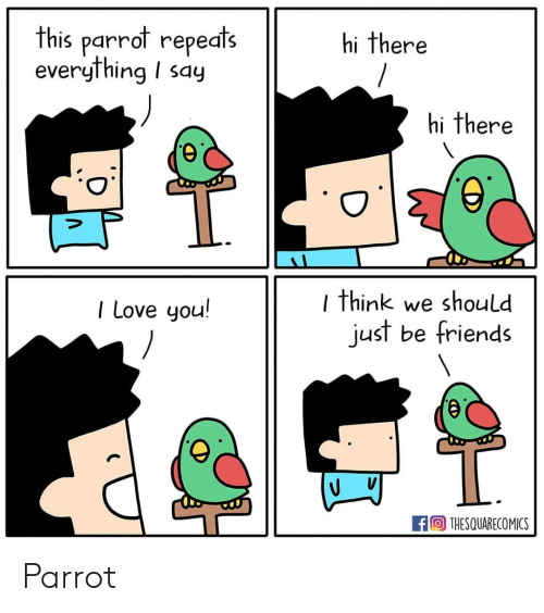 Friends, Love, and Memes: this parrot repeats  everything I say  hi there  hi there  I think we should  just be friends  I Love you!  THESQUARECOMICS Parrot