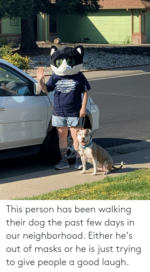 Good, Been, and Dog: This person has been walking their dog the past few days in our neighborhood. Either he's out of masks or he is just trying to give people a good laugh.