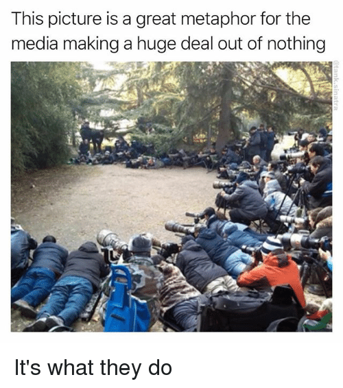 Funny, Metaphor, and Media: This picture is a great metaphor for the  media making a huge deal out of nothing It's what they do