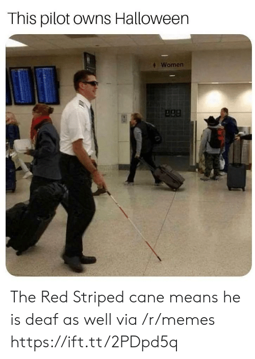 Halloween, Memes, and Women: This pilot owns Halloween  Women  apa The Red Striped cane means he is deaf as well via /r/memes https://ift.tt/2PDpd5q