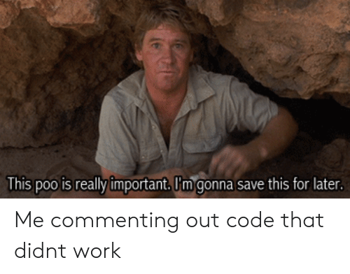 Work, Code, and For: This poo is really important. I'm gonna save this for later Me commenting out code that didnt work