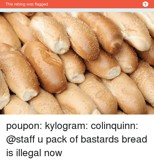 Bailey Jay, Gif, and Tumblr: This reblog was flagged  2 poupon:  kylogram:   colinquinn: @staff u pack of bastards bread is illegal now