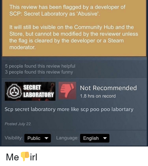 This Review Has Been Flagged by a Developer of SCP Secret