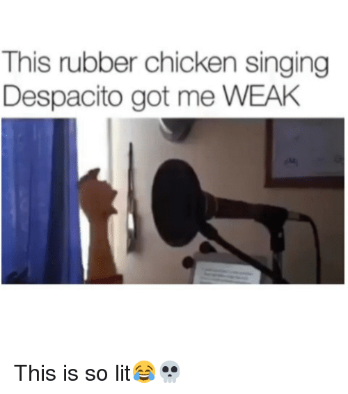 Funny, Lit, and Singing: This rubber chicken singing  Despacito got me WEAH This is so lit😂💀