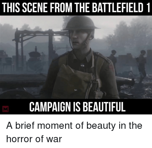 THIS SCENE FROM THE BATTLEFIELD 1 Sir CAMPAIGNIS BEAUTIFUL a Brief