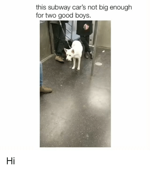 Cars, Memes, and Subway: this subway car's not big enough  for two good boys. Hi
