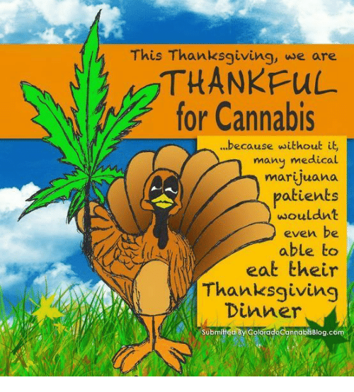 This Thanksgiving We Are THANKFUL for Cannabis Because ...