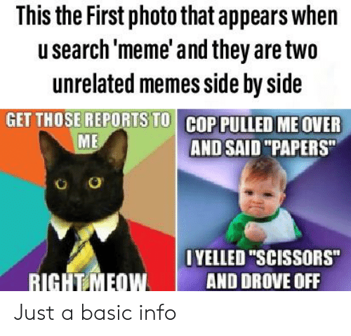 """Meme, Memes, and Dank Memes: This the First photo that appears when  usearch 'meme' and they are two  unrelated memes side by side  GET THOSE REPORTS TO COP PULLED ME OVER  ME  AND SAID """"PAPERS""""  O  OYELLED """"SCISSORS""""  RIGHT MEOW  AND DROVE OFF Just a basic info"""