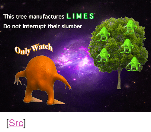 """Reddit, Tree, and Com: This tree manufactures LIMES  Do not interrupt their slumber  Watcl  Only <p>[<a href=""""https://www.reddit.com/r/surrealmemes/comments/8b8j78/please_do_not_disturb/"""">Src</a>]</p>"""