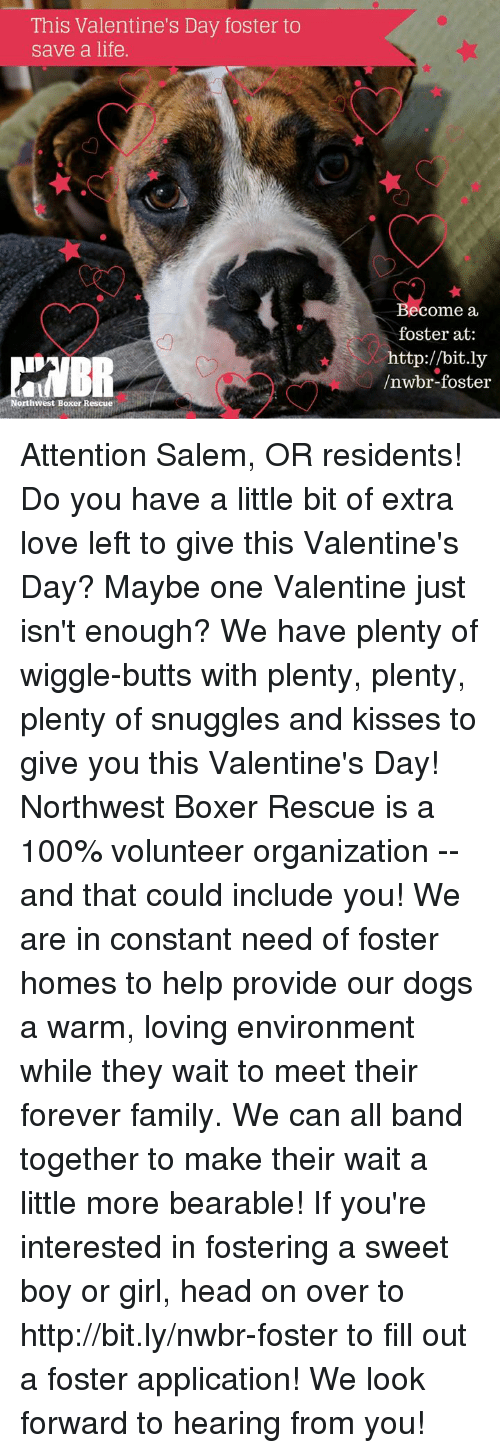 Anaconda, Dogs, and Family: This Valentine's Day foster to  save a life.  Become a  foster at:  http://bit.ly  /nwbr-foster  Northwest Boxer Rescue Attention Salem, OR residents! Do you have a little bit of extra love left to give this Valentine's Day? Maybe one Valentine just isn't enough? We have plenty of wiggle-butts with plenty, plenty, plenty of snuggles and kisses to give you this Valentine's Day!  Northwest Boxer Rescue is a 100% volunteer organization -- and that could include you! We are in constant need of foster homes to help provide our dogs a warm, loving environment while they wait to meet their forever family. We can all band together to make their wait a little more bearable!  If you're interested in fostering a sweet boy or girl, head on over to http://bit.ly/nwbr-foster to fill out a foster application! We look forward to hearing from you!
