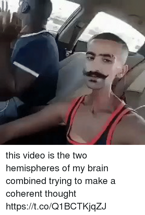 Funny, Brain, and Video: this video is the two hemispheres of my brain combined trying to make a coherent thought https://t.co/Q1BCTKjqZJ