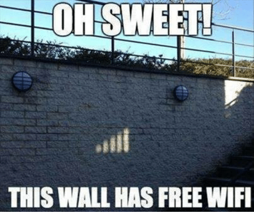 Memes, Free, and Wifi: THIS WALL HAS FREE WIFI