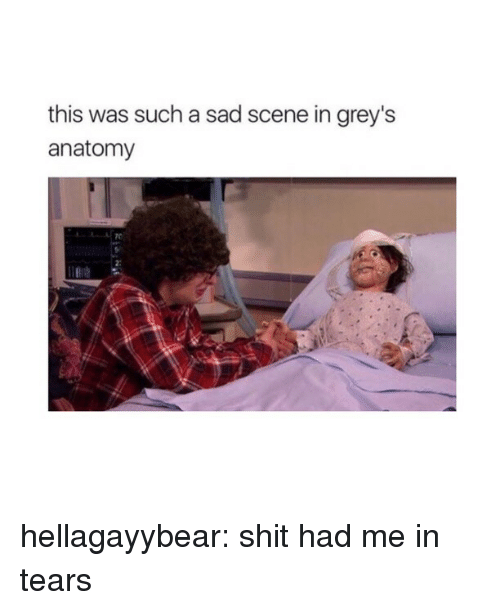 Shit, Tumblr, and Grey's Anatomy: this was such a sad scene in grey's  anatomy  2: hellagayybear:  shit had me in tears