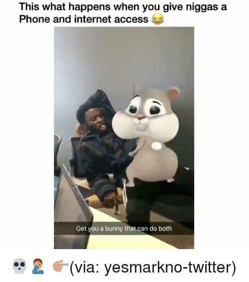 Funny, Internet, and Phone: This what happens when you give niggas a  Phone and internet access  Get you a bunny that can do both 💀🤦🏽‍♂️ 👉🏽(via: yesmarkno-twitter)