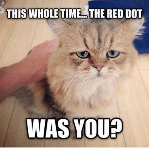 Memes, Reds, and Time: THIS WHOLE TIME THE RED DOT  WAS YOU?