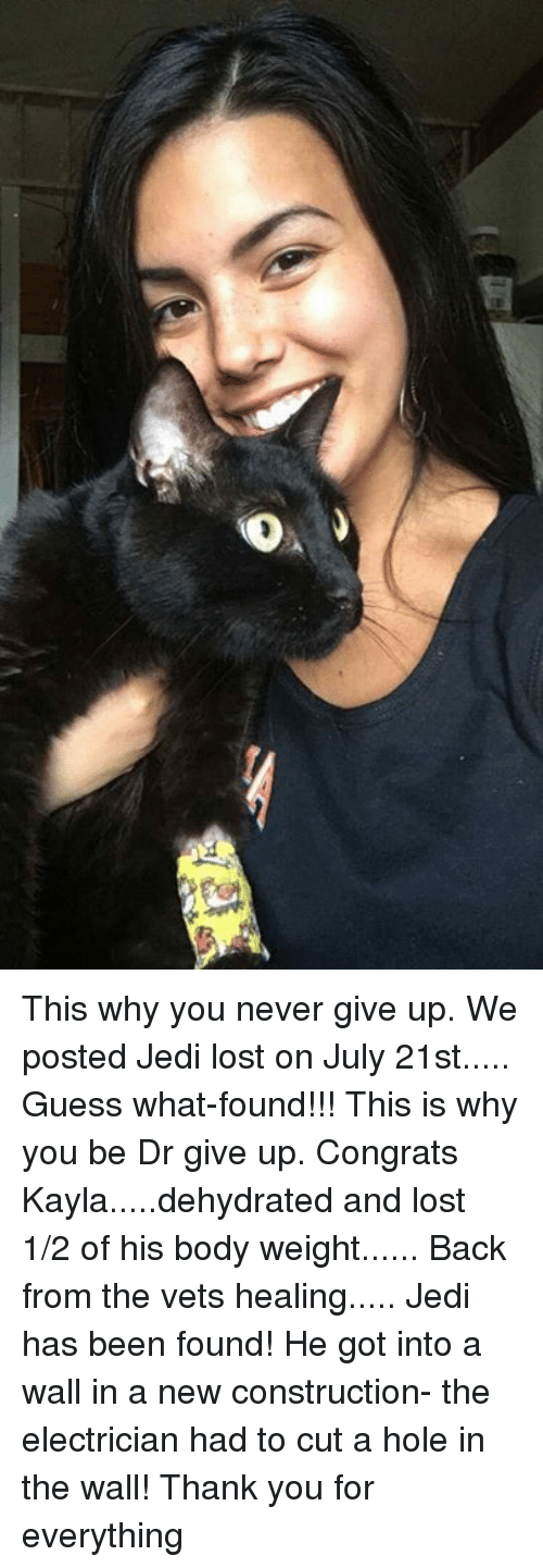 Jedi, Memes, and Lost: This why you never give up.  We posted Jedi lost on July 21st.....  Guess what-found!!!  This is why you be Dr give up.  Congrats Kayla.....dehydrated and lost 1/2  of his body weight...... Back from the vets healing.....  Jedi has been found! He got into a wall in a new construction- the electrician had to cut a hole in the wall! Thank you for everything