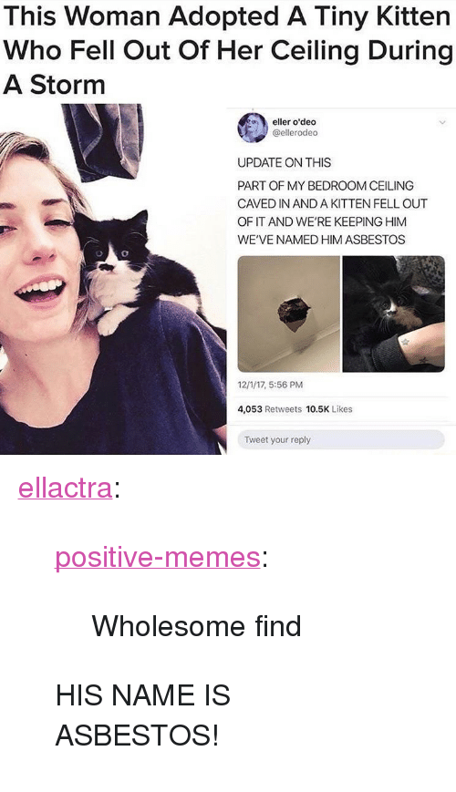 "Memes, Tumblr, and Blog: This Woman Adopted A Tiny Kitten  Who Fell Out Of Her Ceiling During  A Storm  eller o'deo  @ellerodeo  UPDATE ON THIS  PART OF MY BEDROOM CEILING  CAVED IN AND A KITTEN FELL OUT  OF IT AND WE'RE KEEPING HIM  WE'VE NAMED HIM ASBESTOS  12/1/17, 5:56 PM  4,053 Retweets 10.5K Likes  Tweet your reply <p><a href=""http://ellactra.tumblr.com/post/168623599163/positive-memes-wholesome-find-his-name-is"" class=""tumblr_blog"">ellactra</a>:</p> <blockquote> <p><a href=""https://positive-memes.tumblr.com/post/168622817290/wholesome-find"" class=""tumblr_blog"">positive-memes</a>:</p>  <blockquote><p>Wholesome find</p></blockquote>  <p>HIS NAME IS ASBESTOS!</p> </blockquote>"
