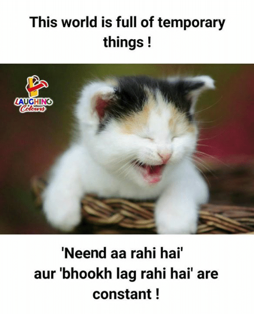 Search hai Memes on SIZZLE