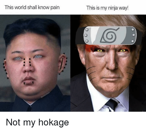 Ninja, World, and Dank Memes: This world shall know pain  This is my ninja way! Not my hokage