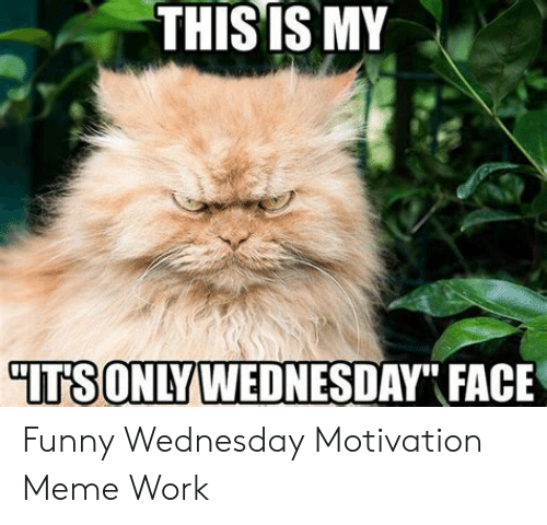 Thisis My Its Only Wednesday Face Funny Wednesday Motivation Meme Work Funny Meme On Me Me
