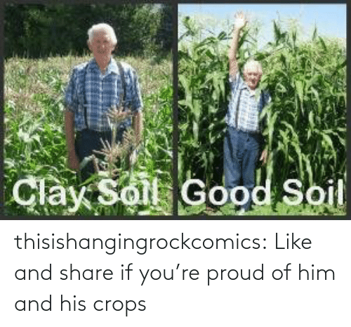 Tumblr, Blog, and Http: thisishangingrockcomics:  Like and share if you're proud of him and his crops