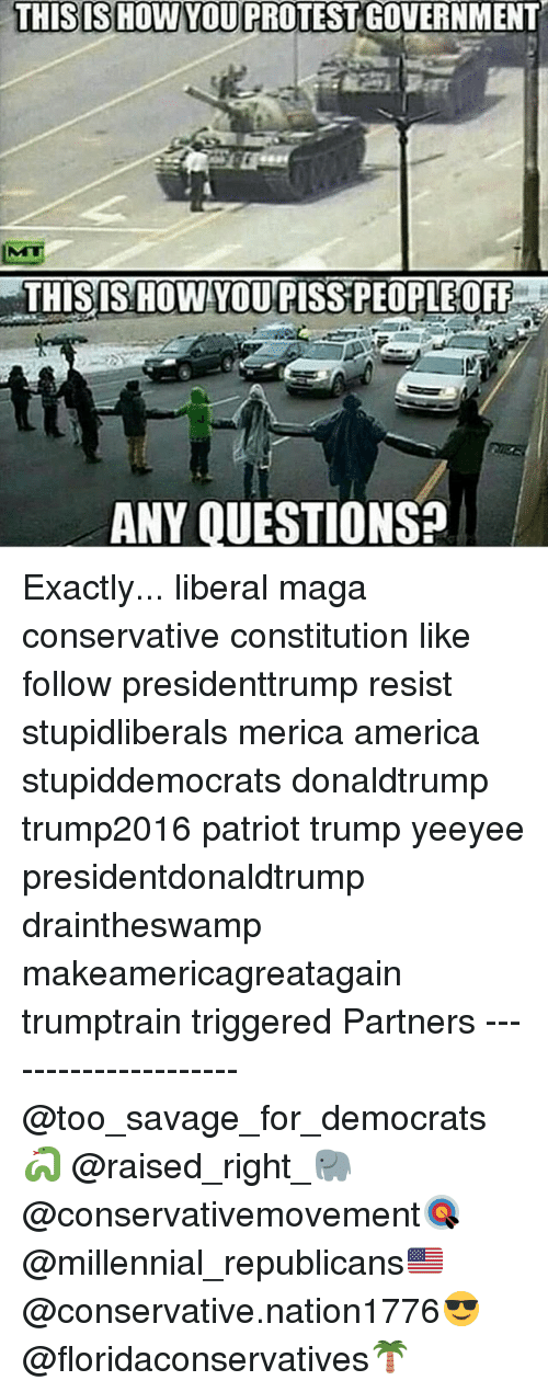 America, Memes, and Protest: THISISHOW YOU PROTEST GOVERNMENT  THISIS HOW YOUPISS PEOPLEOFF  ANY OUESTIONS Exactly... liberal maga conservative constitution like follow presidenttrump resist stupidliberals merica america stupiddemocrats donaldtrump trump2016 patriot trump yeeyee presidentdonaldtrump draintheswamp makeamericagreatagain trumptrain triggered Partners --------------------- @too_savage_for_democrats🐍 @raised_right_🐘 @conservativemovement🎯 @millennial_republicans🇺🇸 @conservative.nation1776😎 @floridaconservatives🌴