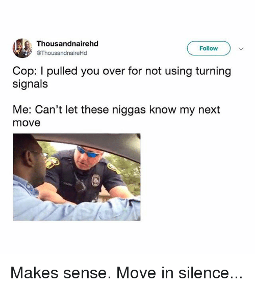 Memes, Silence, and 🤖: Tho  @ThousandnaireHd  usandnairehd  Follow  Cop: I pulled you over for not using turning  signals  Me: Can't let these niggas know my next  move Makes sense. Move in silence...