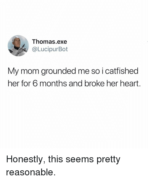 Memes, Heart, and Mom: Thomas.exe  @LucipurBot  My mom grounded me so i catfished  her for 6 months and broke her heart. Honestly, this seems pretty reasonable.