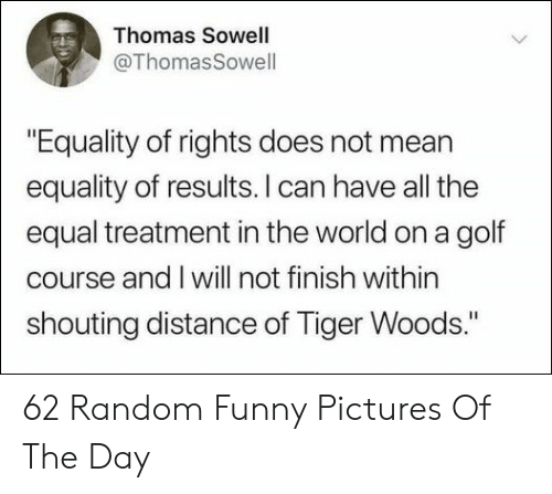 "Funny, Tiger Woods, and Golf: Thomas Sowell  @ThomasSowell  ""Equality of rights does not mean  equality of results. I can have all the  equal treatment in the world on a golf  course and I will not finish within  shouting distance of Tiger Woods."" 62 Random Funny Pictures Of The Day"
