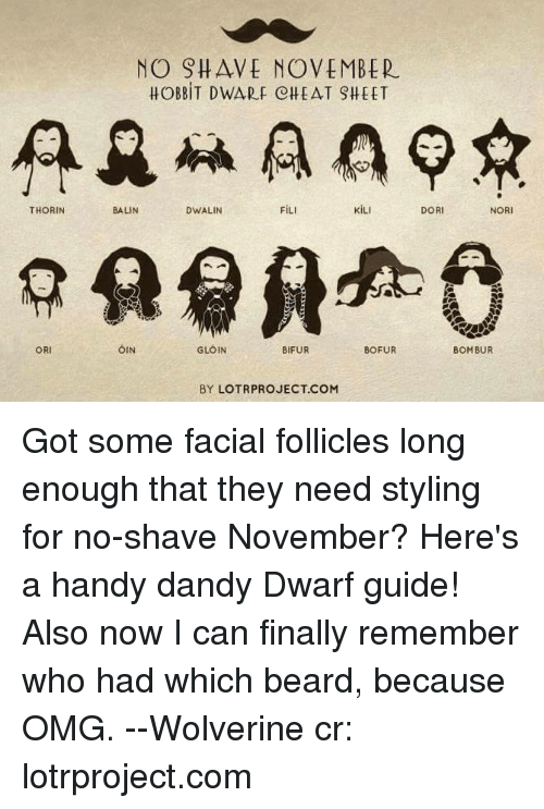 Beard, Cheating, and Memes: THORIN  ORI  NO SHAVE NOVEMBER  HOBBIT DWARF (CHEAT SHEET  FiLI  BALIN  DWALIN  KILI  GLOIN  OIN  BOFUR  BIFUR  BY LOTR PROJECT. COM  DORI  NORI  BOMBUR Got some facial follicles long enough that they need styling for no-shave November? Here's a handy dandy Dwarf guide!  Also now I can finally remember who had which beard, because OMG.  --Wolverine  cr: lotrproject.com