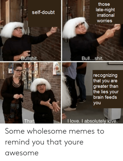 Love, Memes, and Brain: those  late-night  irrational  self-doubt  worries  Bullshit.  Bull...shit.  recognizing  that you are  greater than  the lies your  brain feeds  you  I love. I absolutely love.  That Some wholesome memes to remind you that youre awesome