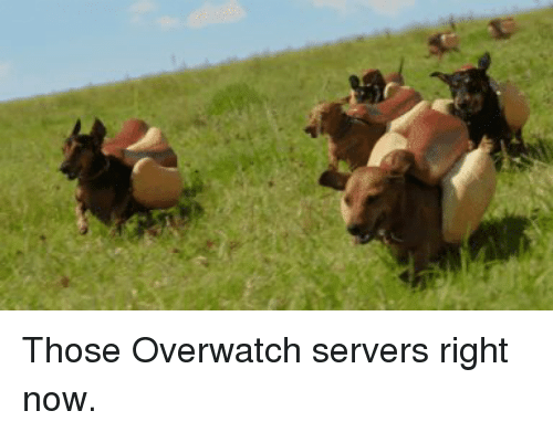 🔥 25+ Best Memes About Overwatch Server | Overwatch Server Memes