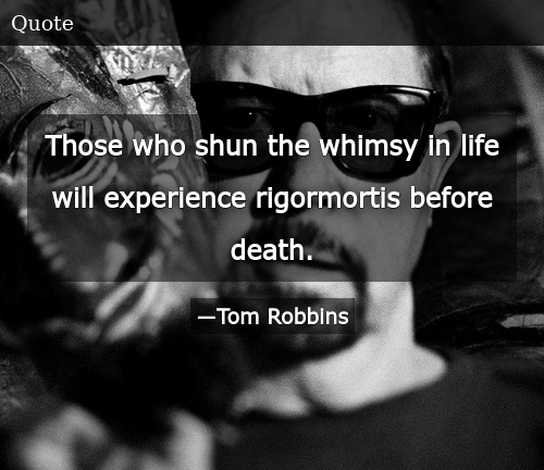 Those Who Shun the Whimsy in Life Will Experience