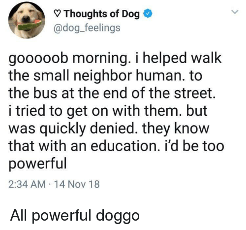 Powerful, An Education, and Doggo: Thoughts of Dog *  @dog_feelings  gooooob morning. i helped walk  the small neighbor human. to  the bus at the end of the street.  i tried to get on with them. but  as quickly denied. they know  that with an education. i'd be too  powerful  2:34 AM 14 Nov 18 All powerful doggo