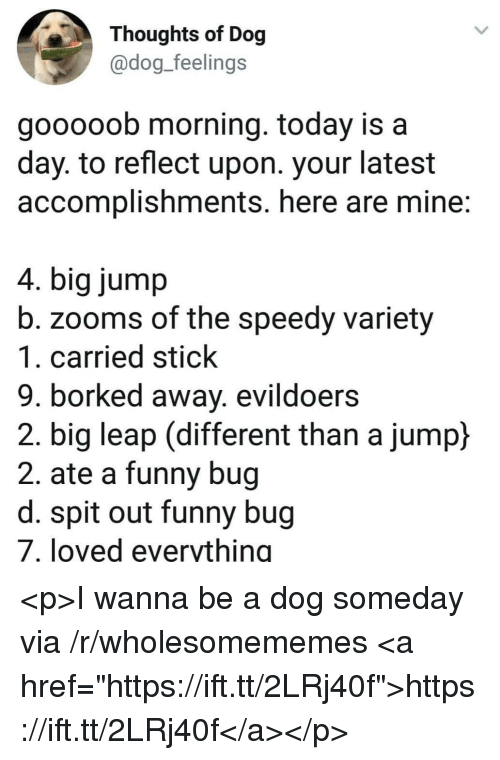 """Funny, Today, and Dog: Thoughts of Dog  @dog_feelings  gooooob morning. today is a  day. to reflect upon. your latest  accomplishments. here are mine:  4. big jump  b. zooms of the speedy variety  1. carried stick  9. borked away. evildoers  2. big leap (different than a jump)  2. ate a funny bug  d. spit out funny bug  7. loved everything <p>I wanna be a dog someday via /r/wholesomememes <a href=""""https://ift.tt/2LRj40f"""">https://ift.tt/2LRj40f</a></p>"""