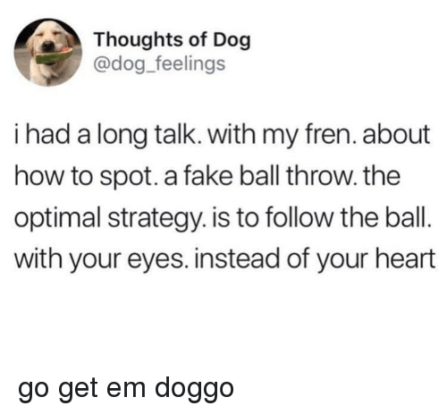 Fake, Heart, and How To: Thoughts of Dog  @dog_feelings  i had a long talk. with my fren. about  how to spot. a fake ball throw. the  optimal strategy. is to follow the ball.  with your eyes. instead of your heart <p>go get em doggo</p>