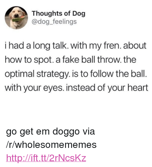 "Fake, Heart, and How To: Thoughts of Dog  @dog_feelings  i had a long talk. with my fren. about  how to spot. a fake ball throw. the  optimal strategy. is to follow the ball.  with your eyes. instead of your heart <p>go get em doggo via /r/wholesomememes <a href=""http://ift.tt/2rNcsKz"">http://ift.tt/2rNcsKz</a></p>"