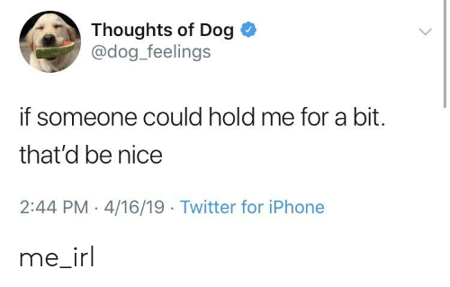 Iphone, Twitter, and Irl: Thoughts of Dog  @dog_feelings  if someone could hold me for a bit.  that'd be nice  2:44 PM 4/16/19 Twitter for iPhone me_irl