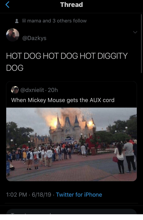 Iphone, Lil Mama, and Twitter: Thread  lil mama and 3 others follow  @Dazkys  HOT DOG HOT DOG HOT DIGGITY  DOG  @dxnielit 20h  When Mickey Mouse gets the AUX cord  1:02 PM 6/18/19 Twitter for iPhone