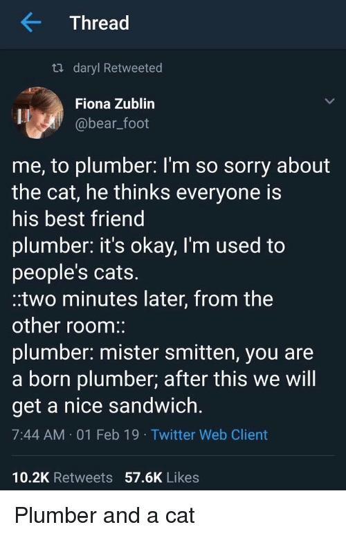 Best Friend, Cats, and Sorry: Thread  ta daryl Retweeted  Fiona Zublin  @bear_foot  me, to plumber: l'm so sorry about  the cat, he thinks everyone is  his best friend  plumber. it's okay, I'm used to  people's cats.  .two minutes later, from the  other room:  plumber: mister smitten, you are  a born plumber; after this we will  get a nice sandwich.  7:44 AM 01 Feb 19 Twitter Web Client  10.2K Retweets 57.6K Likes Plumber and a cat