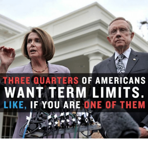 Memes, 🤖, and One: THREE QUARTERS OF AMERICANS  WANT TERM LIMITS  LIKE, IF YOU ARE ONE OF THEM