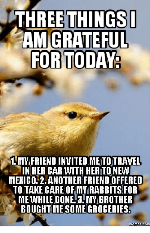 three things i am grateful for today 1 mvifriend invited 13991774 ✅ 25 best memes about grateful dead meme grateful dead memes