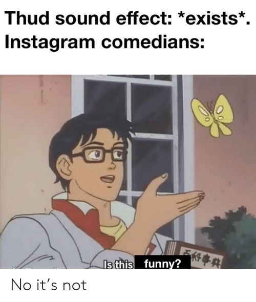 Thud Sound Effect *Exists* Instagram Comedians Is This Funny