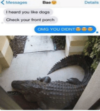 """Bae, Dank, and Dogs: < Messages  Bae  Details  I heard you like dogs  Check your front porch  OMG YOU DIDNT <p>Damn via /r/dank_meme <a href=""""http://ift.tt/2eTRjbF"""">http://ift.tt/2eTRjbF</a></p>"""