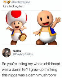 Childhood ruined 😕: .</ @sadboyzyano  its a fucking hat.  caillou  @PlayboyCaillou  So you're telling my whole childhood  was a damn lie?I grew up thinking  this nigga was a damn mushroom Childhood ruined 😕