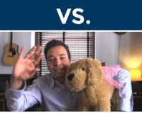 """Gif, Head, and Target: <h2><b>ROUND 3!!!</b></h2><p>These two GIFs are about to face-off in the <b><a href=""""http://fallontonight.tumblr.com/post/127481560657/this-week-8-reaction-gifs-are-going-head-to-head"""" target=""""_blank"""">FalPal Favorite FallonTonight Reaction GIF Tournament!</a></b></p><p><b>Reply below</b> with which GIF you want to win. Voting ends at 9pm ET.</p><h2>Which GIF do you want to see advance to the next round, """"HAAAY"""" or """"Wave""""? </h2>"""